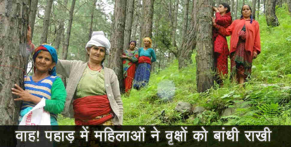 women tide rakhi to tree in uttarakhand  - uttarakhand nature, uttarakhand women  , uttarakhand, uttarakhand news, latest news from uttarakhand,उत्तराखंड,