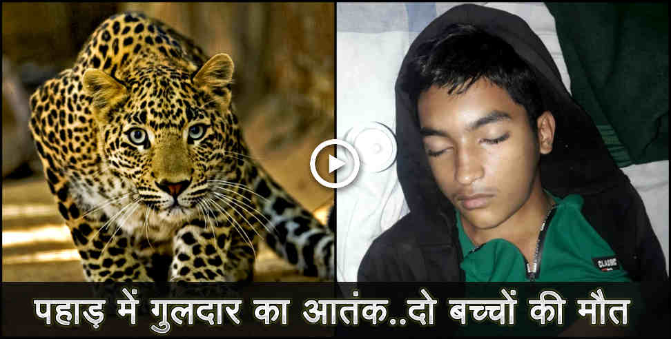 student died due to heart attack in bagheswar - uttarakhand leopard, bageshwar leopard, uttarakhand, uttarakhand news, latest news from uttarakhand,अस्पताल,डॉक्टरों की रिपोर्ट,द्यांगण गांव,वन विभाग