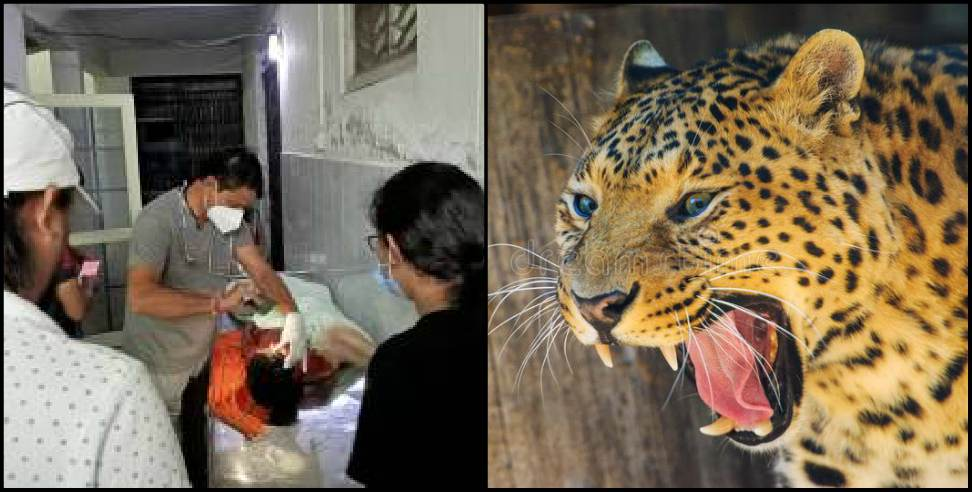 Image: Pithoragarh Leopard attacked 5-year-old girl in Bhattigaon