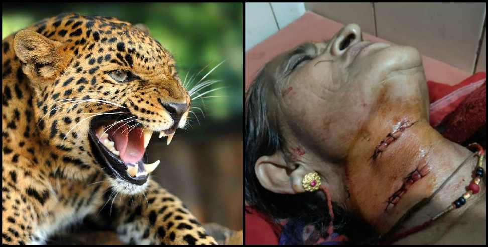 Image: Leopard attack on old women in pithoragarh
