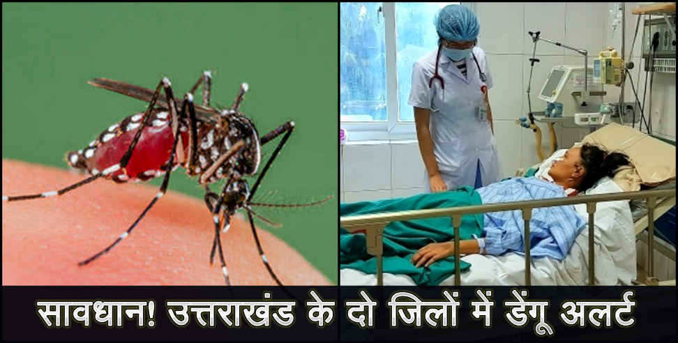 healthandlife: dengue patient reach 368 in uttarakhand