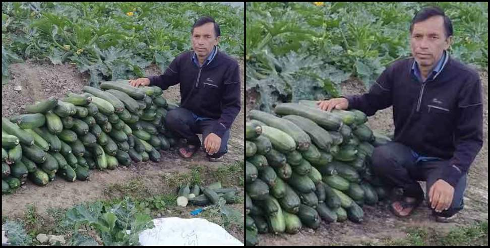 Image: Dalvir a farmer from Uttarkashi made a fabulous income from farming