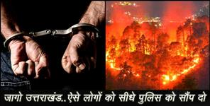 uttarkashi: fire in jungle of uttarakhand
