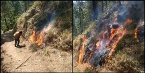Young man set fire to forest for tic-tok video