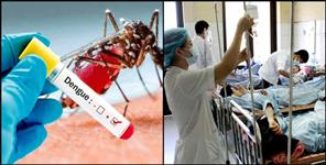 Dengue attack in dehradun, hospitals full