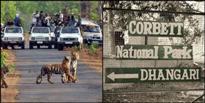 k: CORBETT NATIONAL PARK IS NOW NUMBER ONE