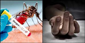 latest-uttarakhand-news: Child dies in haldwani due to dengue