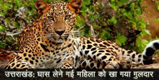 leopard attack on women in bindukhatta uttarakhand