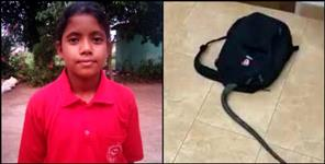 उत्तराखंड: uttarakhand snake found in school girl bag
