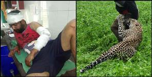 Leopard attacked the villagers in uttarkashi