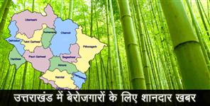 uttarakhand govt initiative for bamboo planting