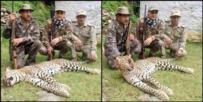 Man-eating leopard hunt in Chamoli district