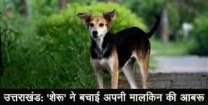 uttarakhand dog saved a lady